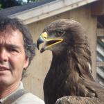 Greifvogelshow 04.10.2010