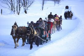 horse and sleigh ride in Werfenweng